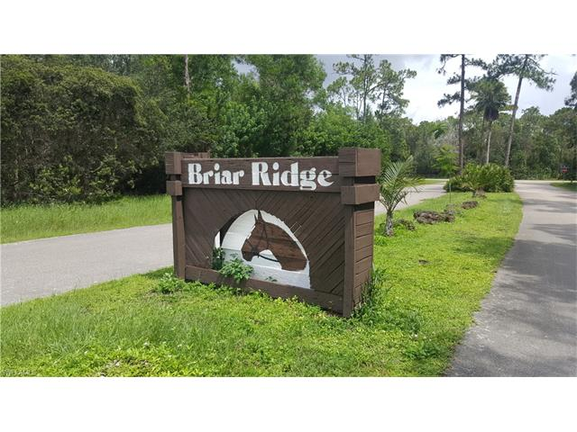 15306 Briar Ridge Cir, Fort Myers, FL 33912