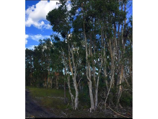 1503 Meadow Rd, Lehigh Acres, FL 33976
