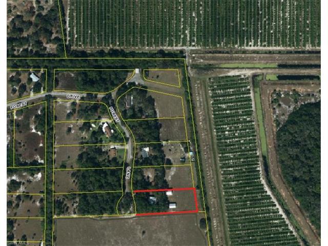 1495 Forest Ln, Clewiston, FL 33440