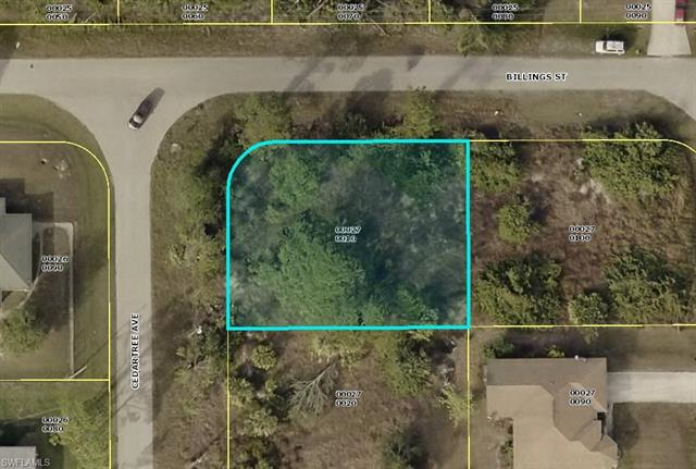 1126 Cedartree Ave, Lehigh Acres, FL 33971