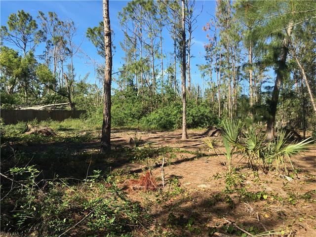 10071 Strike Ln, Bonita Springs, FL 34135