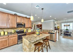 20431 Black Tree Ln, Estero, FL 33928