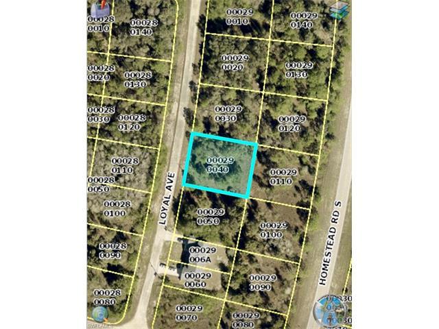 1019 Loyal Ave S, Lehigh Acres, FL 33974