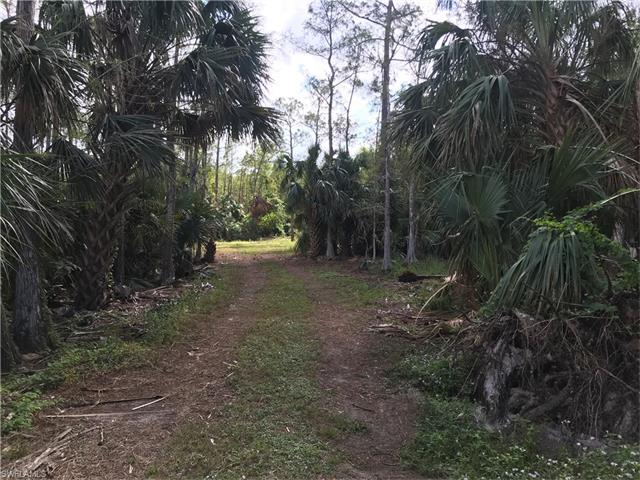 5380 Coral Wood Dr, Naples, FL 34119