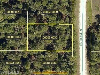 4603 Ruth Ave N, Lehigh Acres, FL 33971