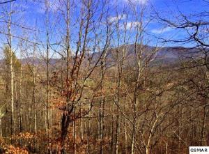 4169 Burning Tree Ln, Sevierville, TN 37862