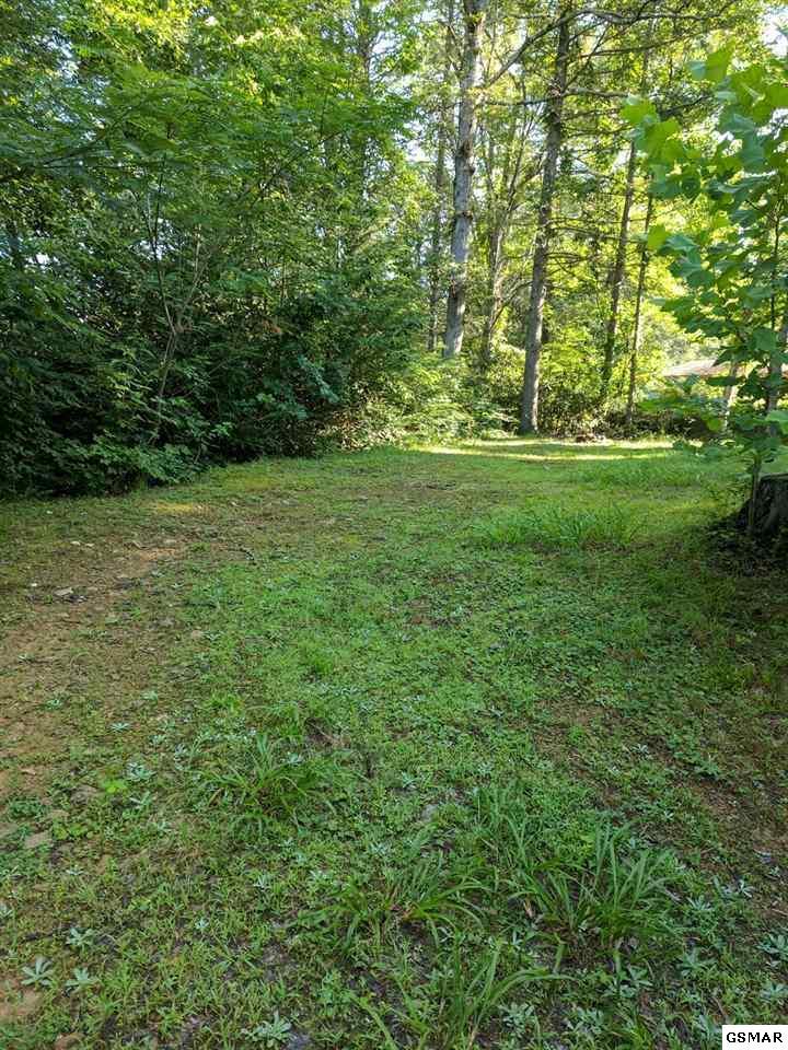 706 Locust Ln, Gatlinburg, TN 37738