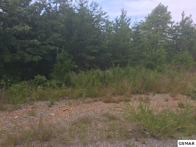 Lot 27 Browder Rd, Newport, TN 37821