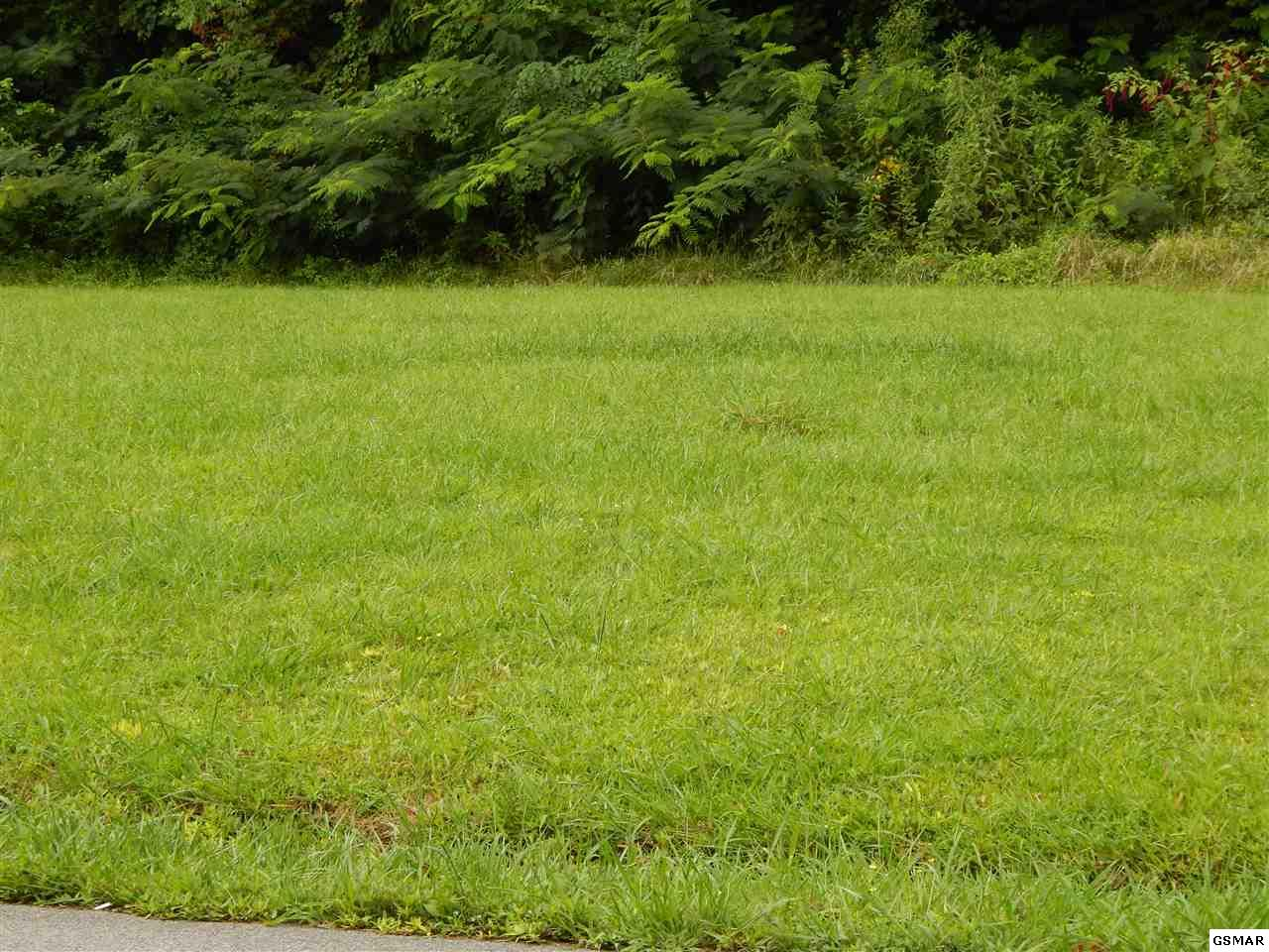 Lot 2 Willa View Dr, Pigeon Forge, TN 37863