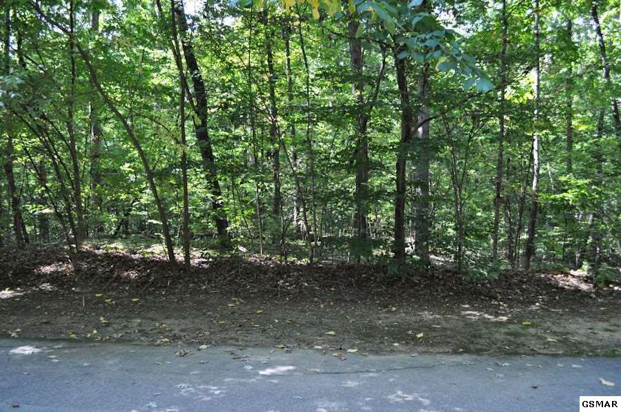 Lot 5r White Oak Drive, Sevierville, TN 37862