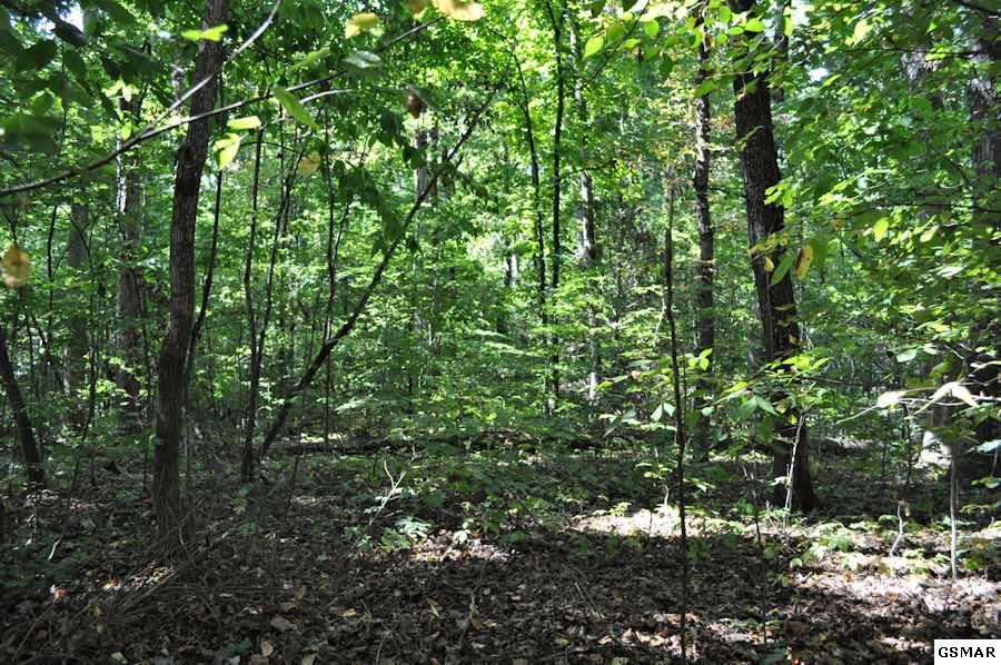 Lot 12 White Oak Drive, Sevierville, TN 37862