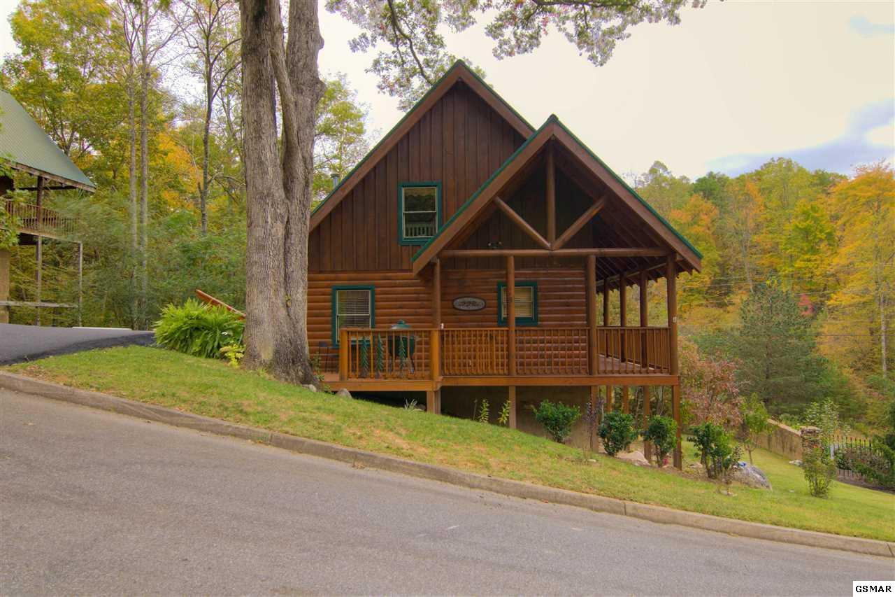 4408 Forest Vista Way, Pigeon Forge, TN 37863