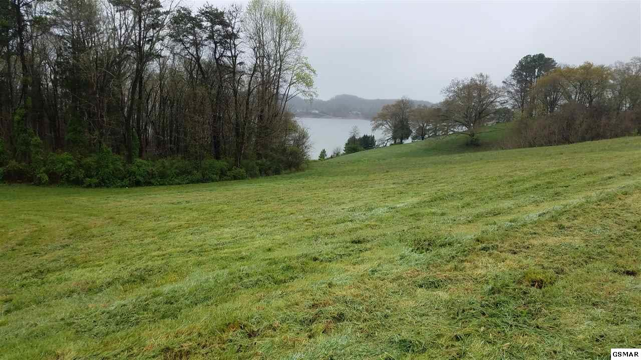 Lot 24 Lakeshore Dr, Dandridge, TN 37725