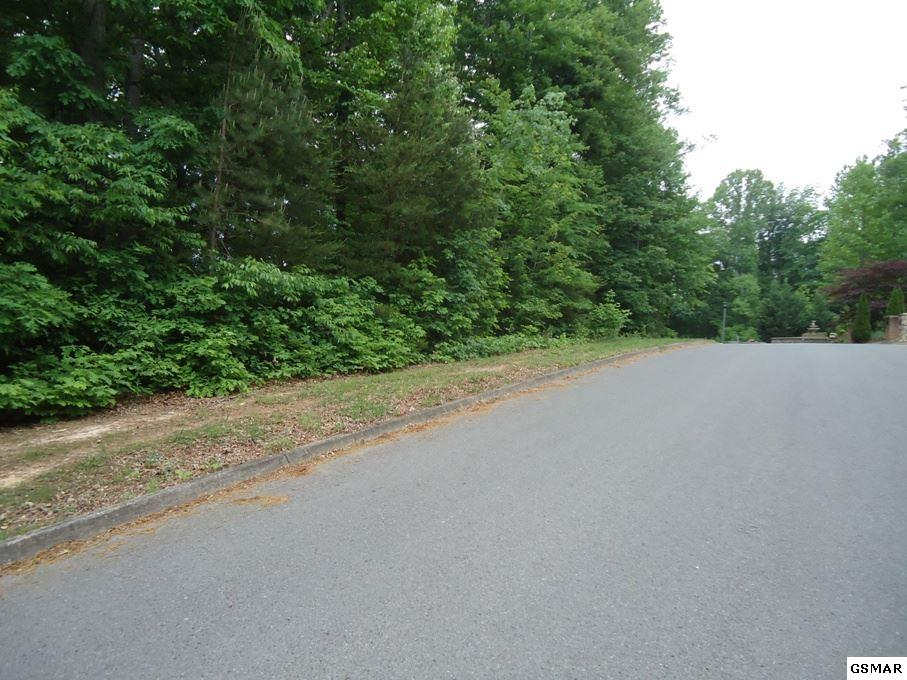 Lot 4 Riceland Drive, Sevierville, TN 37862