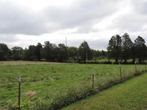 7514 Idol Lane, Corryton, TN 37721