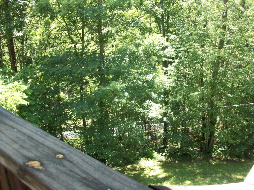 288 Panther Creek Rd, Sevierville, TN 37876