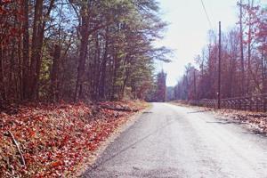 25.16 Ac Scott Wyatt Rd, Deer Lodge, TN 37726