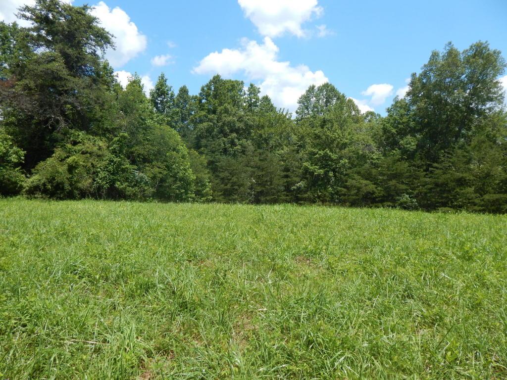 Highpoint Rd, Deer Lodge, TN 37726