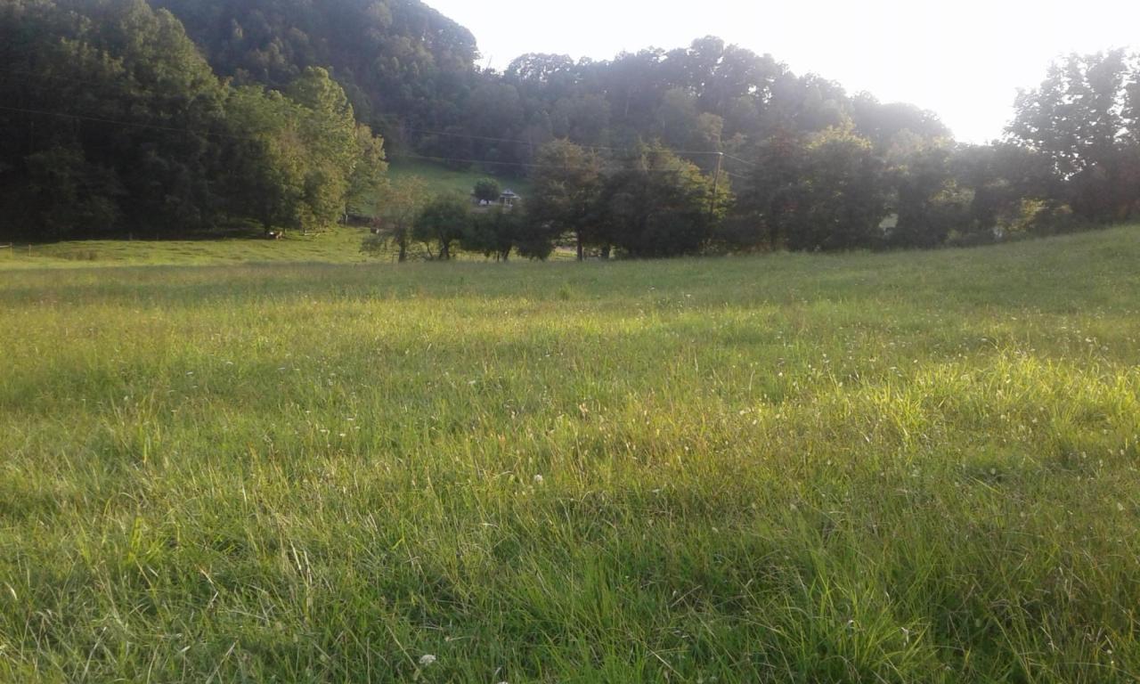 Tbd Black Valley Rd, Sneedville, TN 37869