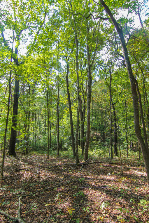 2735 Williams Bend Rd, Knoxville, TN 37932