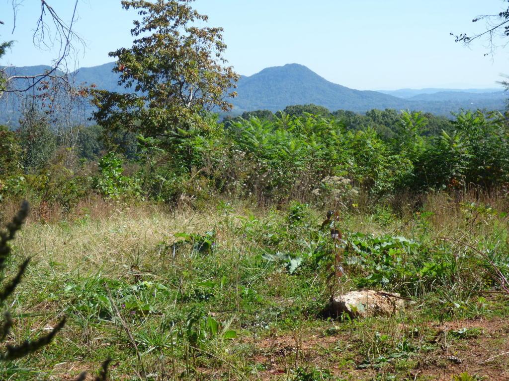 147 Hill Top Lane, Corryton, TN 37721