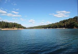 483 Fox Lake Lane, Lafollette, TN 37766