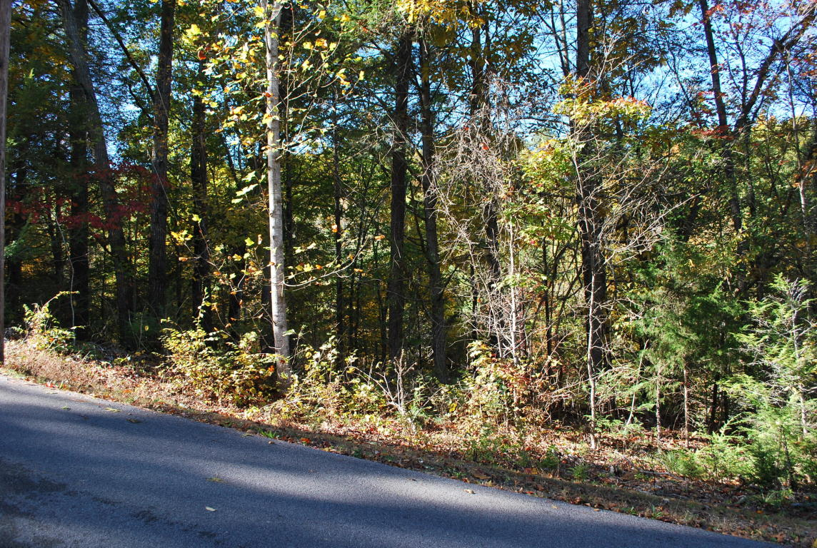 Pinemont Drive, Pigeon Forge, TN 37863