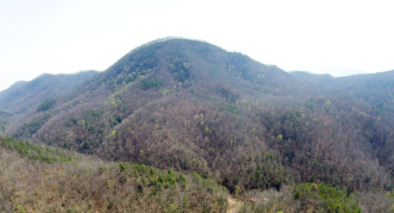 Tract 3a Carrs Creek Rd, Townsend, TN 37882
