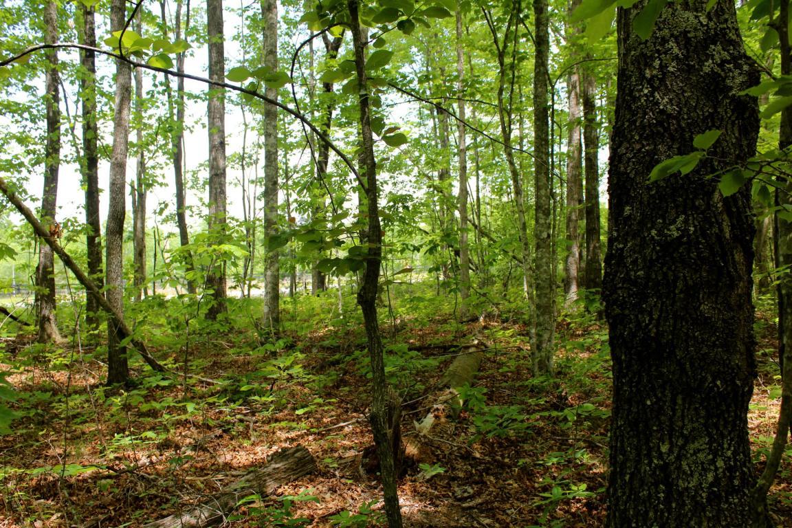 15 Acres Spruce Creek Drive, Jamestown, TN 38556