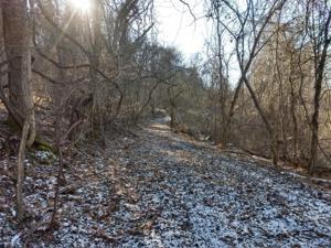 426 Beech Grove Rd, Sneedville, TN 37869