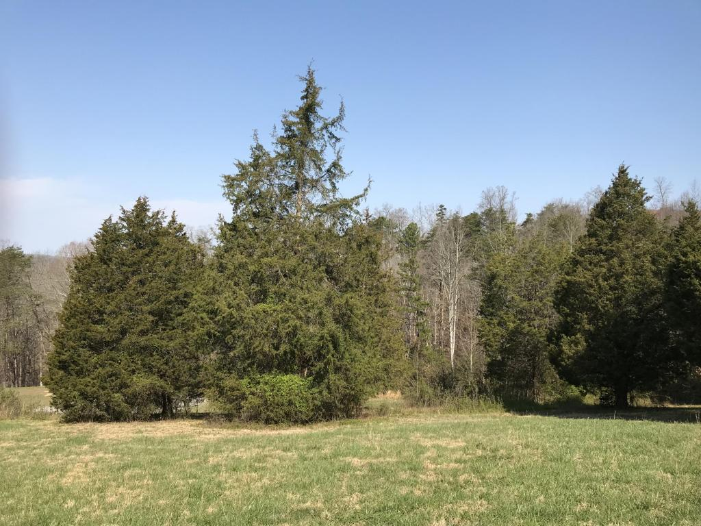 Lakeridge Drive, Maynardville, TN 37807