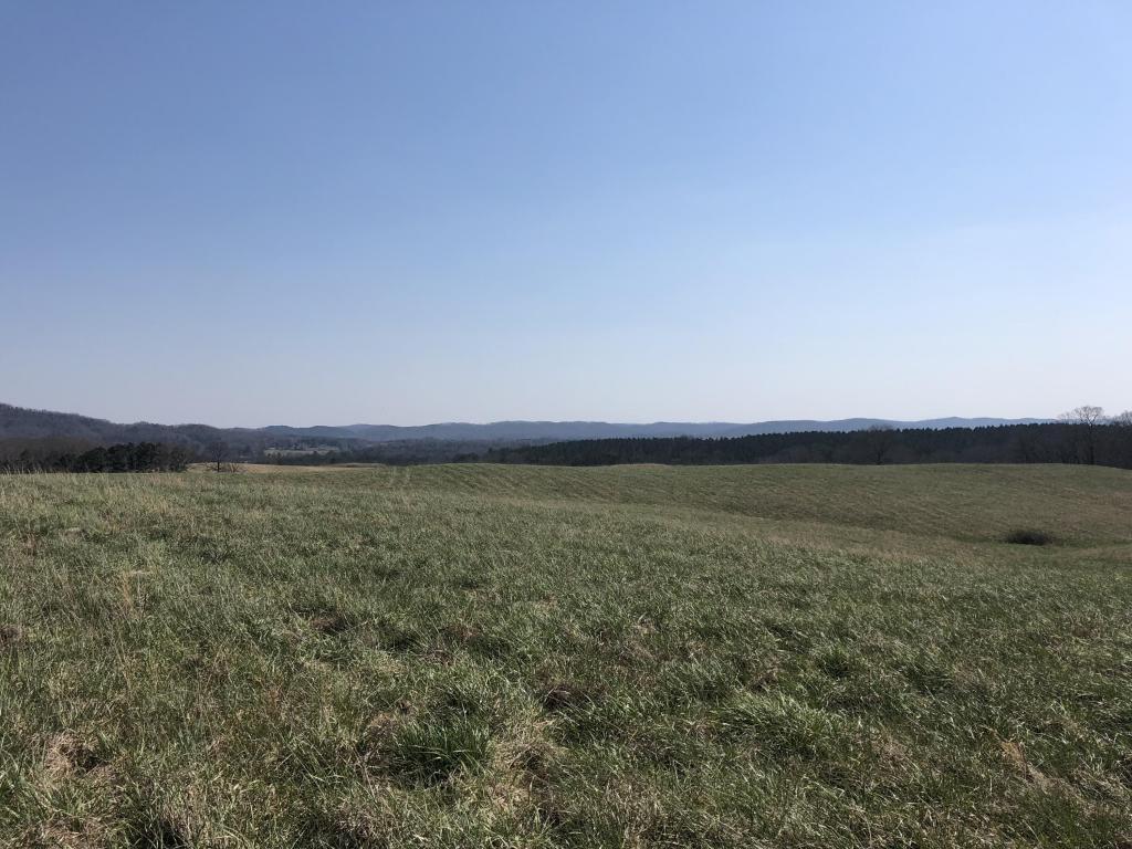 2020 Reed Rd, Ten Mile, TN 37880