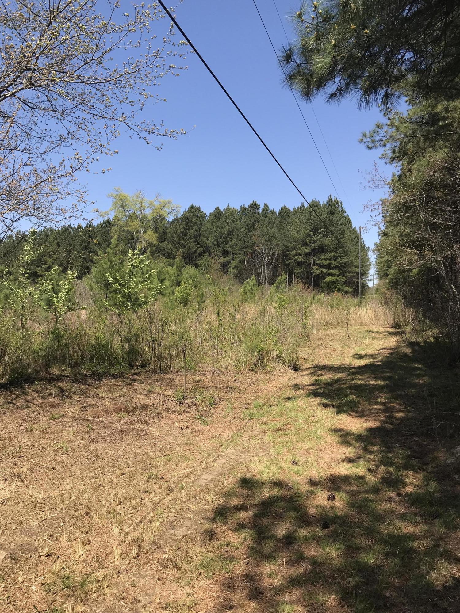 00 County Road 273, Niota, TN 37826