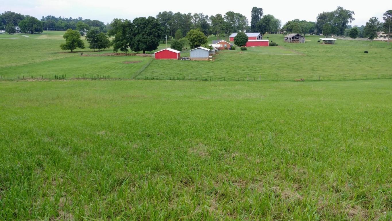 5616 Evergreen Farms Lane, Greenback, TN 37742