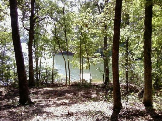 Emerald Pointe Cl Drive, Rockwood, TN 37854