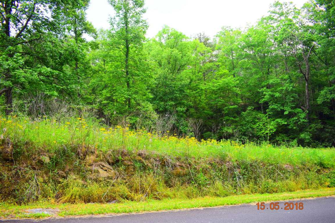 Hatcher Mountain Rd, Sevierville, TN 37862