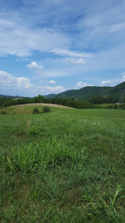 Webster Valley Rd, Rogersville, TN 37857