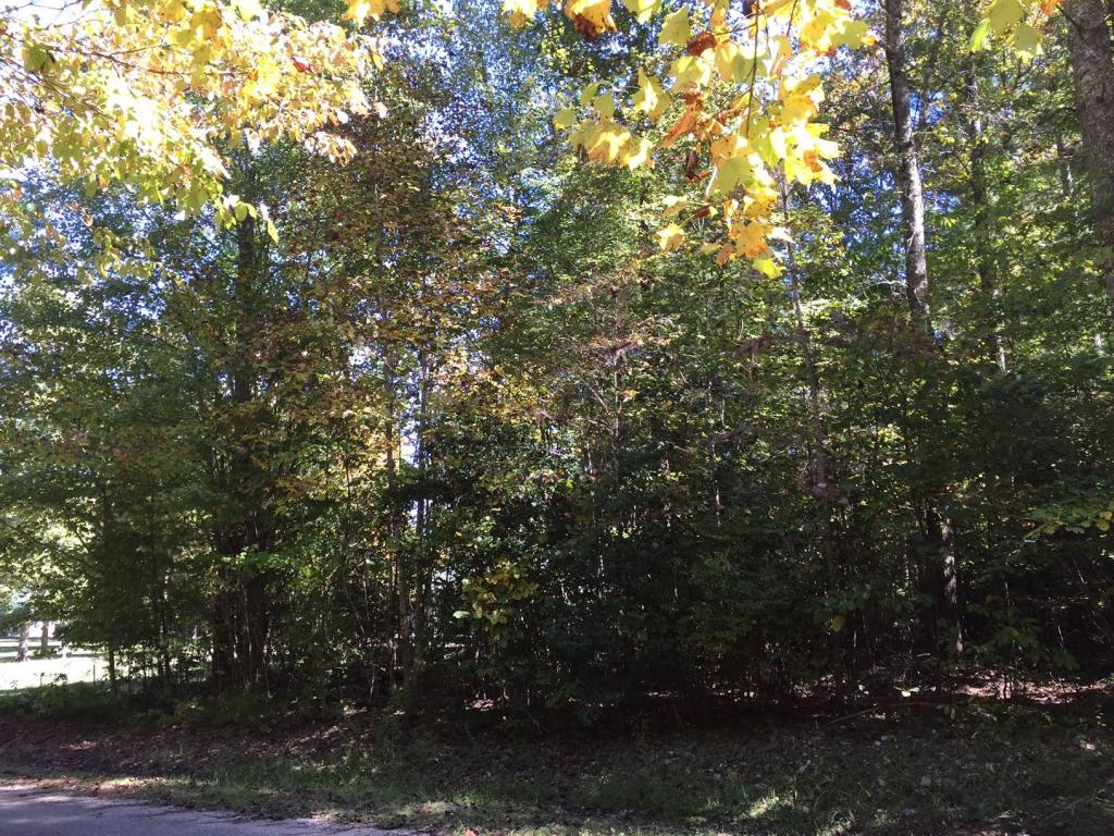 Laurel Branch Private Drive, Oneida, TN 37841