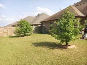 9286 Chastain, Unincorporated, TN 38018