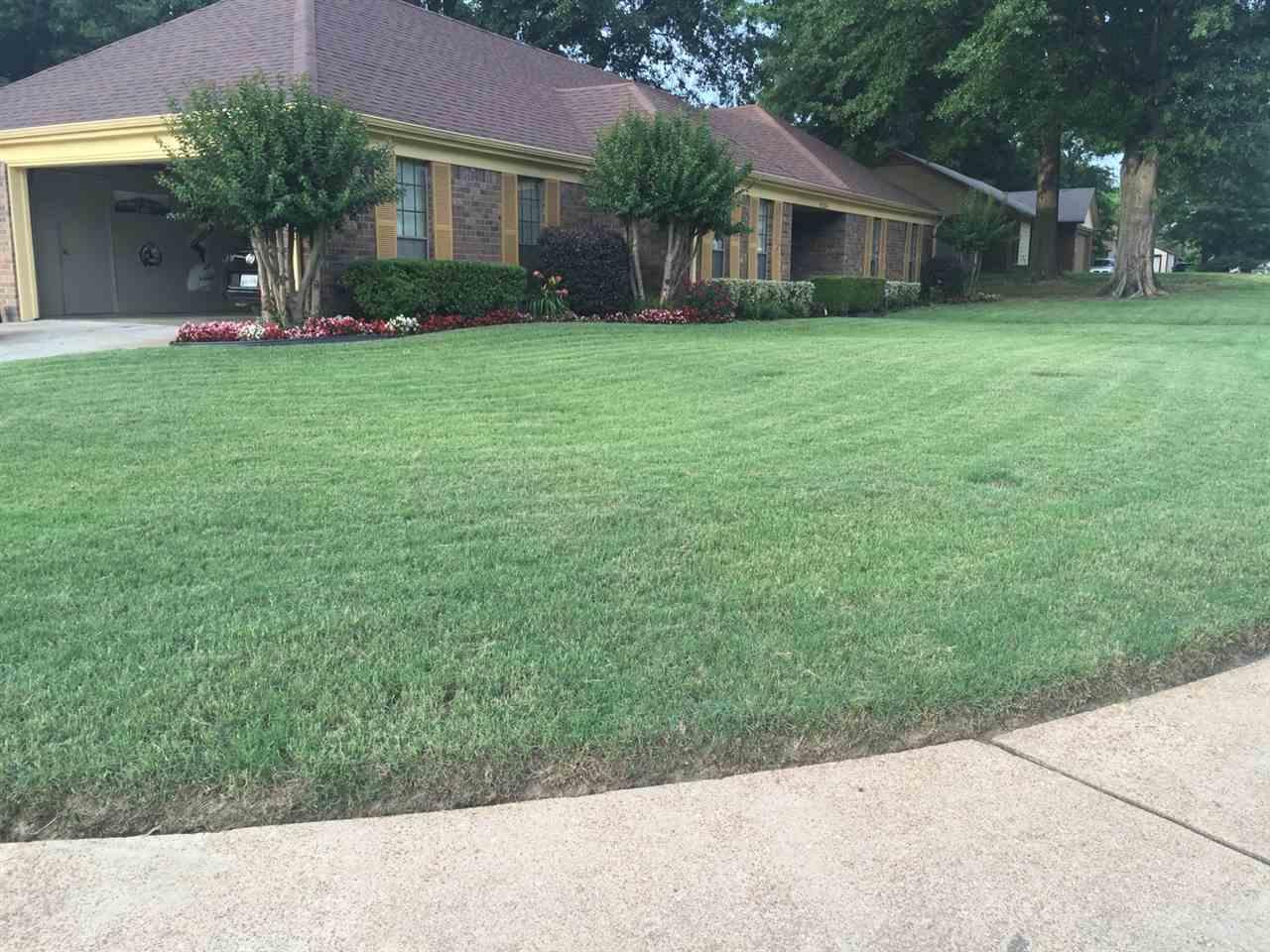6284 Thistlebrook, Memphis, TN 38115
