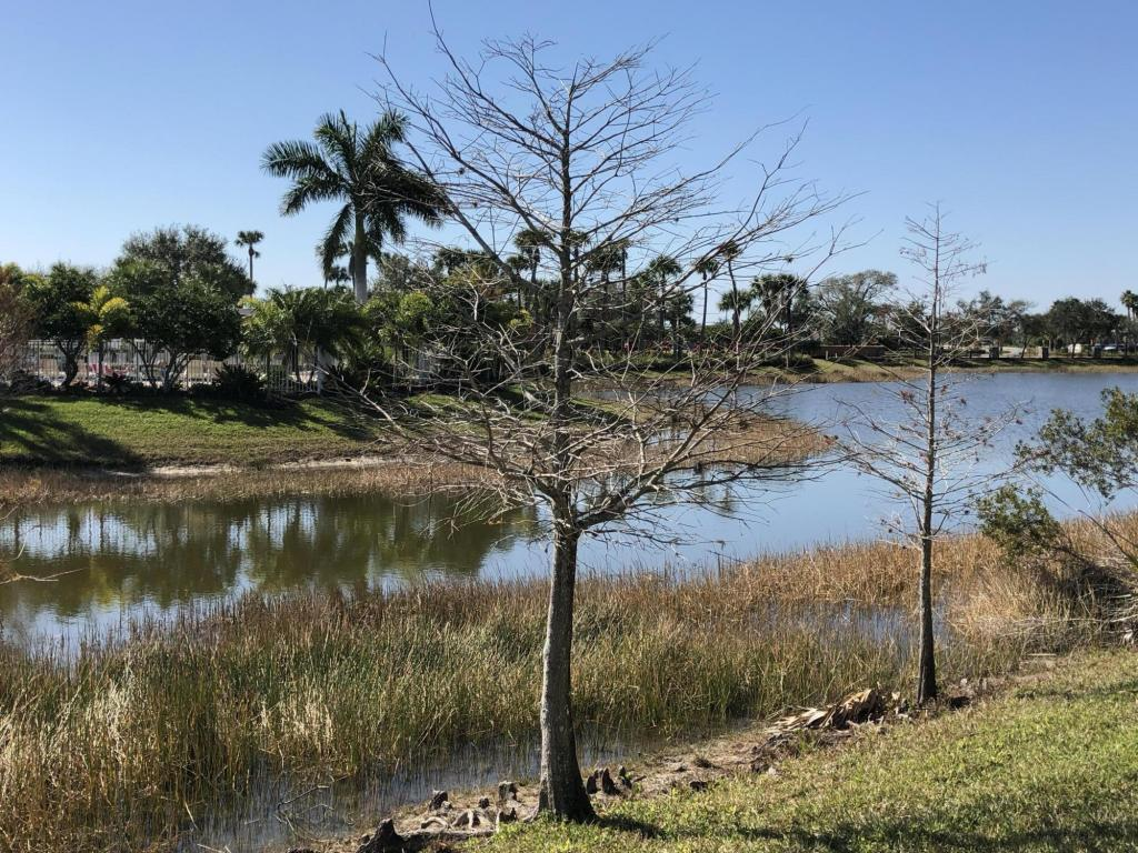 10921 Sw Dunhill Court, Port Saint Lucie, FL 34987
