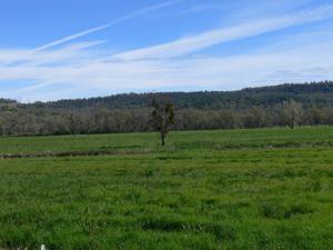 13951 Murphy Ln, Oak Run, CA 96069