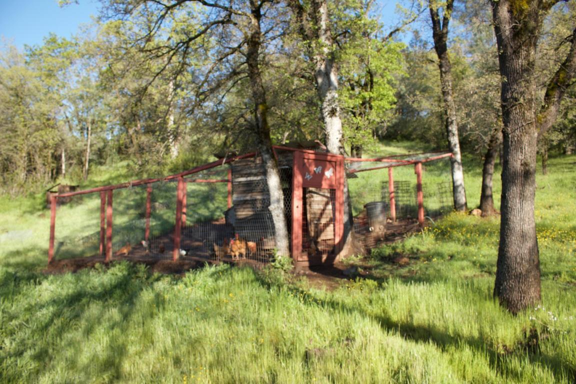 14400 Oak Run Rd, Oak Run, CA 96069