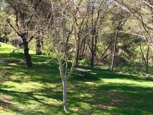 3304 Shasta Dam Blvd, Shasta Lake, CA 96019