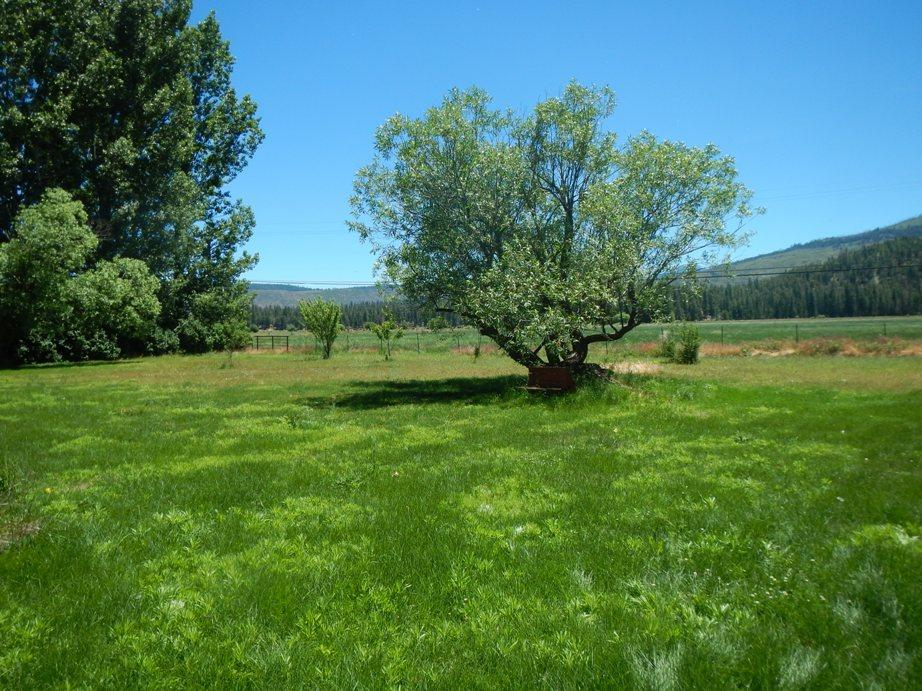42463 Leaping Trout Way, Hat Creek, CA 96040