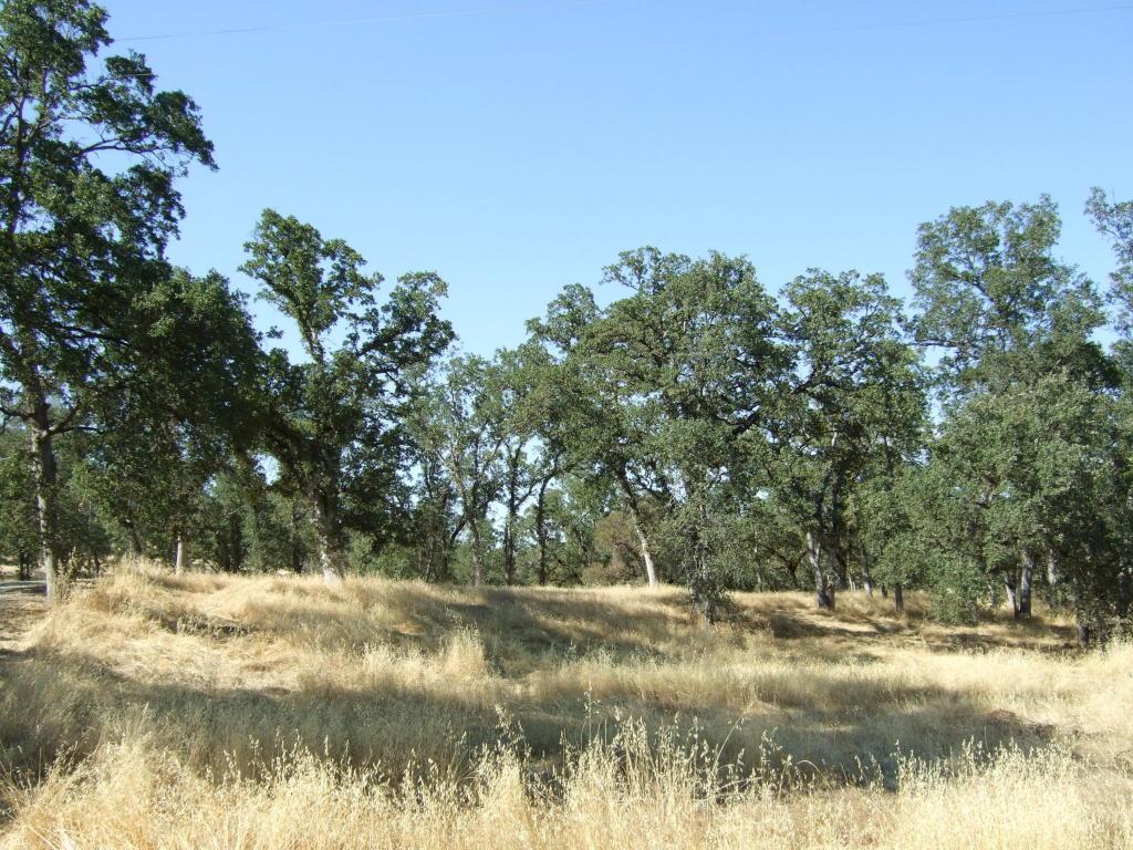 Oak Run Road, Millville, CA 96062