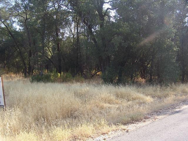 Lot 9 Lahalah Estates, Cottonwood, CA 96022