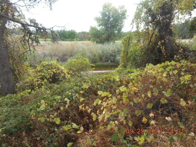 3040 Ark Way, Cottonwood, CA 96022