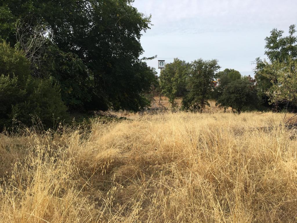 Grace Way, Red Bluff, CA 96080
