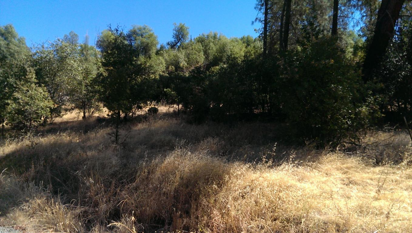 Ravine Road, Redding, CA 96003